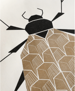 Beetle poster A2 close-up